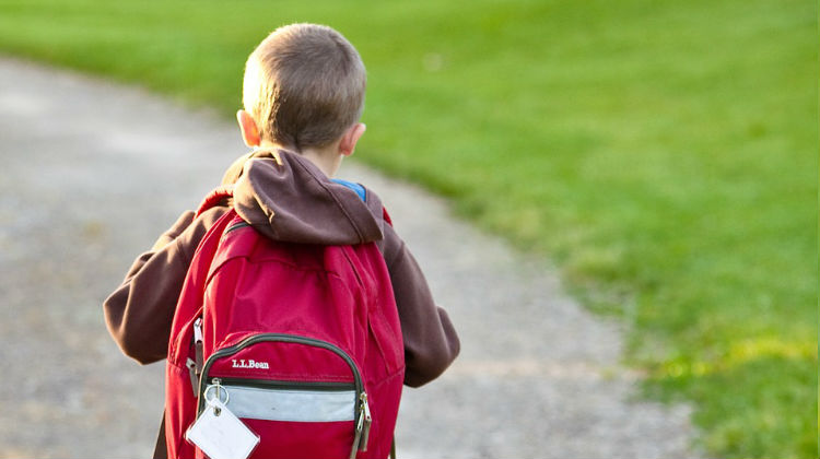 Planning a School Trip