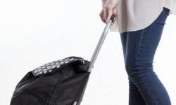 Best Teacher Bags on Wheels