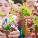 Best Classroom Greenhouses